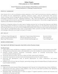 Examples Of Combination Resumes Beauteous Summary In A Resume Functional Summary Resume Examples Customer