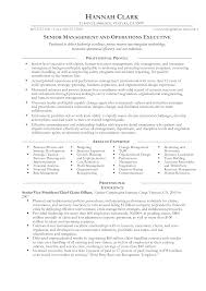 Operations Manager Resume Templates At