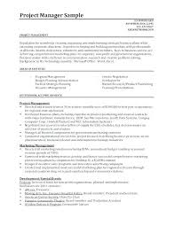 It Project Manager Resume Sample Doc Twnctry