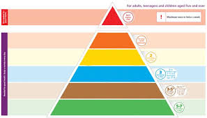 blank food pyramid. Fine Food Food Pyramid Template On Blank F