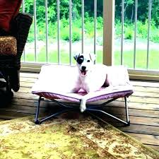 Outdoor Bed For Dogs Dog With Canopy Superjare Xlarge Elevated Pet ...