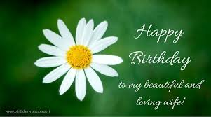 Happy Birthday Wife Quotes Magnificent 48 Birthday Wishes your Wife Would Appreciate