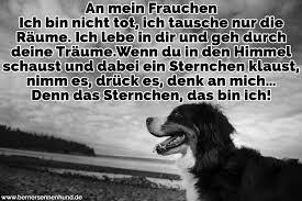 Bild Zitat Zitate Hund Gestorben