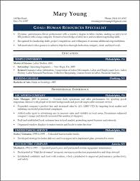us recruiter resume sample resume templates professional us recruiter resume sample staffing recruiter resume sample recruiter resumes resume business technology expert resume template