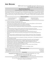 Real Estate Agent Resume Real Estate Sales Resume Sles Jobsxs Com