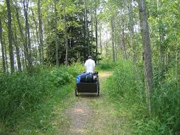 Maybe you would like to learn more about one of these? Lake Superior Cart In Tettegouche State Park Silver Bay Minnesota Rv Parks Mobilerving Com