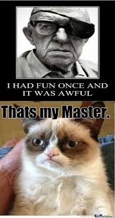 8 best cat images on Pinterest | Funny stuff, Funny cats and Funny ...