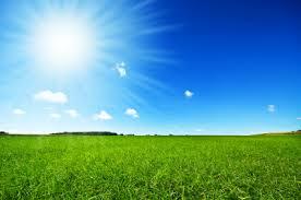 green grass blue sky. Fine Green Fresh Green Grass With Bright Blue Sky Throughout Green Grass Blue Sky D