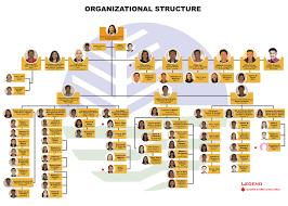Organizational Chart Emb Car Regional Website