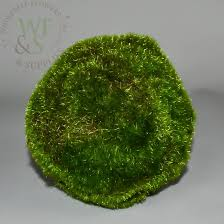 Decorative Moss Balls Decorative Moss Balls 60 Wholesale Flowers and Supplies 9