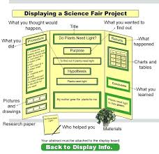 Science Project Labels Printable Science Project Display Board Template Fold Presentation Skincense Co