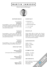 European Cv Template Docx Professional Resume Templates