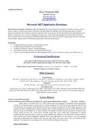 Standard Format Resume Nardellidesign Com