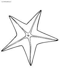 Small Picture simple starfish coloring pages Google Search Under the Sea