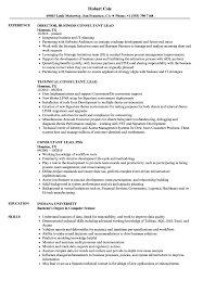 Beautiful Tableau Sample Resumes Gallery Simple Resume Office