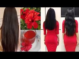 hair growth oil for fast hair growth