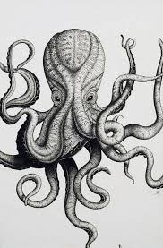 Small Picture The 25 best Octopus tattoo design ideas on Pinterest Octopus