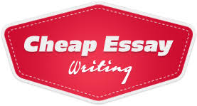 writing service fishing nz cheap essay writing service
