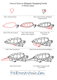 Small Picture How to Draw an Alligator Snapping Turtle