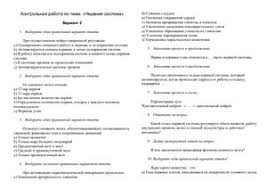 Нервная система класс doc Все для студента Нервная система 8 класс