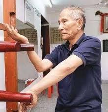 Ip Chun   Wing chun martial arts, Karate martial arts, Kung fu martial arts