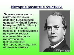 Презентация на тему МОКУ Покровская средняя общеобразовательная  3 История развития генетики