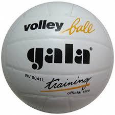 Купить <b>мяч волейбольный Gala Training</b> тренировочный арт ...