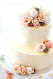 Amazing Simple Round Wedding Cake For Bcg54 Round 2 Tier Small