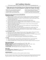 Sample Counselor Resume Unique Career Consultant Sample Resume Simple Resume Examples For Jobs