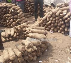 Yam Wholesales Business