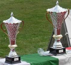 Coppa Italia Serie D 2007-2008 - Wikipedia