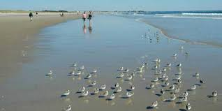 Maine Beaches Where To Go Vacation Travel Guides