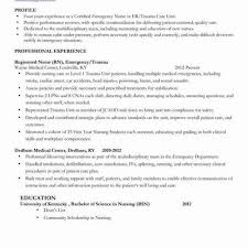 Professional Profile Cv Graduate Archives Sierra 40 Latest