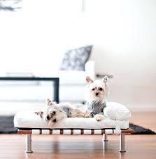 modern dog furniture. Modern Pet Bed Dog Furniture Mid Century Beds Via Diy .