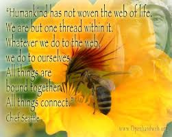 Chief Seattle quote - web of life | Openhand