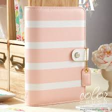 Websters Pages Color Crush Blush Stripe Planner Kit Personal