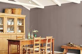 alpaca paint colorNatural Wonder Color Collections  HGTV HOME by SherwinWilliams