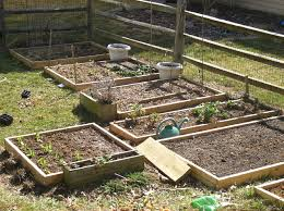 top result plans for raised garden beds on legs unique wood for raised bed vegetable garden