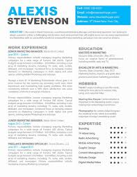Professional Resumes Templates Free Downloadable Free Resume Templates Resume Template And Cover Letter 85