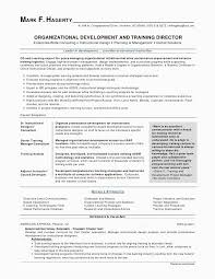 Resume Template Professional Gorgeous Awesome Cv Template Simple Professional Resume Examples Picture