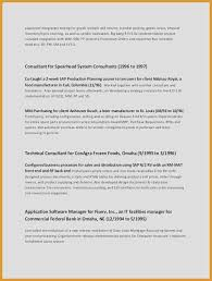 Accountant Resume Magnificent Example Of Resume Summary Awesome Accountant Resume Summary From