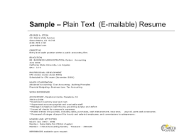 Text Resume Template