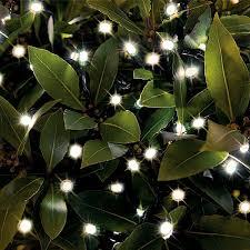 cole bright 50 warm white led dual power string lights solar garden lighting webbs garden centre
