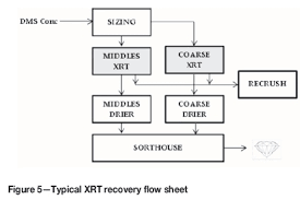Diamond Mining Process Flow Chart Application Of Diamond Size Frequency Distribution And Xrt