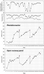 Design Of Raceway Ponds For Producing Microalgae Frontiers Comparison Of Microalgae Cultivation In