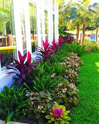 outdoor gardening. Stunning Way To Add Tropical Colors Your Outdoor Landscaping Gardening I