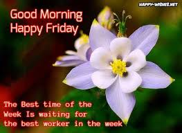 Good Morning Friday Quotes Interesting Good Morning Wishes On Friday Quotes Images And Pictures Happy