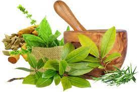 Ayurvedic Medicine For Healthy Body | Naturestask