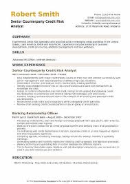 Credit Analyst Resume Fascinating Credit Risk Analyst Resume Samples QwikResume
