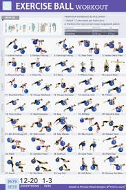 Free Exercise Ball Chart Pets Home Exercise Ball Workouts 35 Super Effective Moves